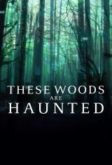 These Woods are Haunted